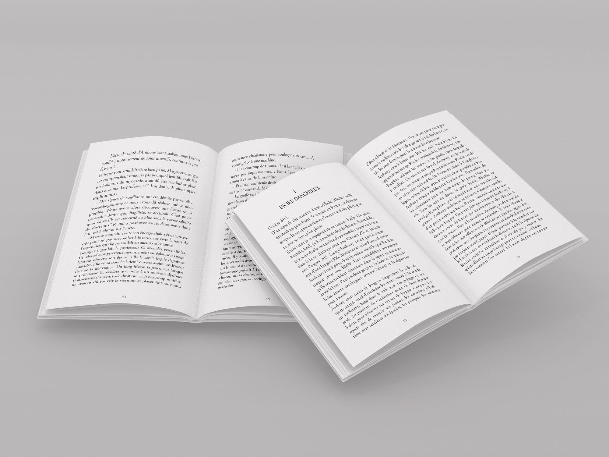 pages intérieures livre Anthony Loersch